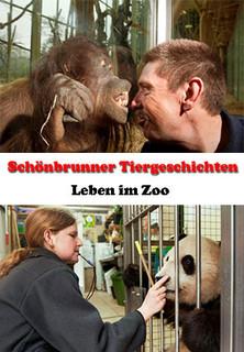 Schönbrunner Tiergeschichten - Leben im Zoo stream