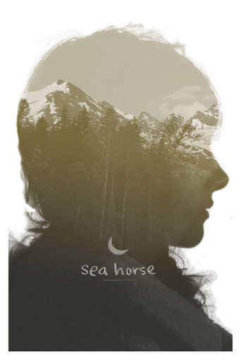 Sea Horse stream