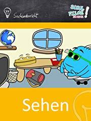 Sehen/Auge - Grundlagen (Grundschule) - Schulfilm Sachkunde stream