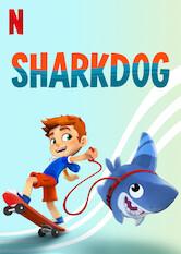 Sharkdog Stream