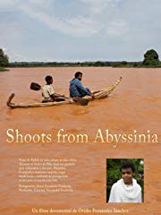 Shoots from Abyssinia stream