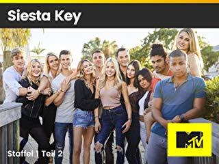 Siesta Key Stream