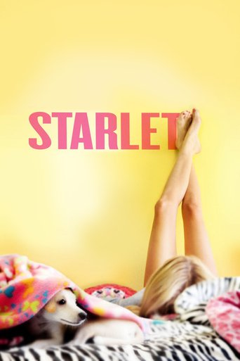 Starlet stream