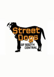 Street Dogs of South Central stream