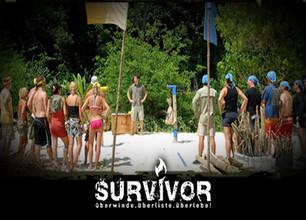 Survivor - stream