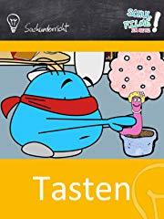 Tasten/Haut - Grundlagen (Grundschule) - Schulfilm Sachkunde stream