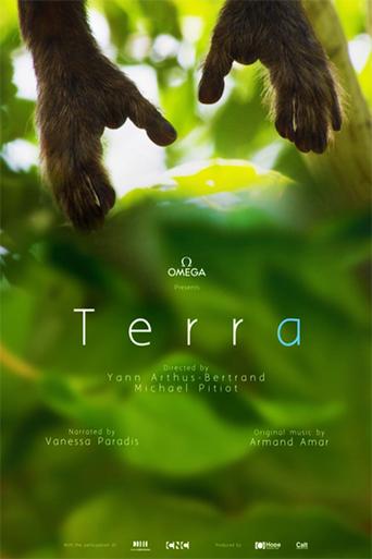 Terra - stream