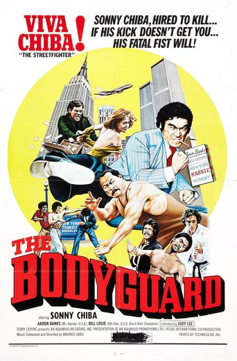 The Bodyguard stream