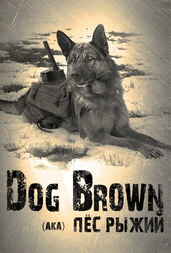 The War Dog - Ihre letzte Hoffnung Stream