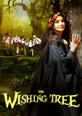 The Wishing Tree stream