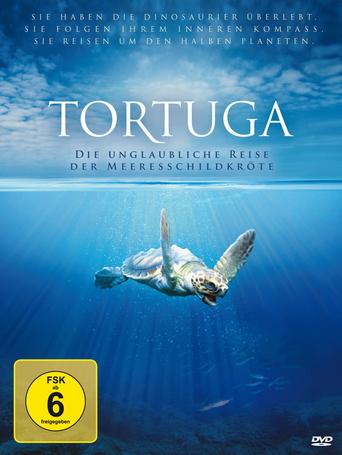 Tortuga - Die unglaubliche Reise der Meeresschildkröte stream