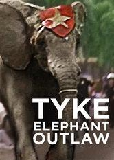 Tyke Elephant Outlaw stream