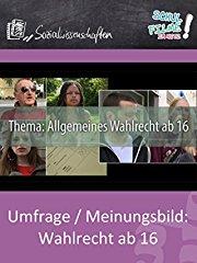 Umfrage / Meinungsbild: Wahlrecht ab 16 - Schulfilm Sozialwissenschaften stream