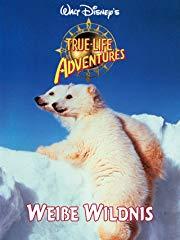 Weiße Wildnis  /  Abenteuer in der weißen Wildnis stream