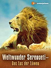 Weltwunder Serengeti - Das Los des Löwen stream