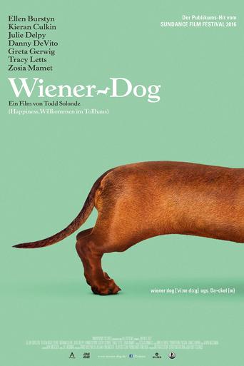 Wiener Dog stream