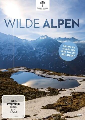Wilde Alpen Stream