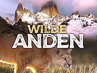 Wilde Anden Stream