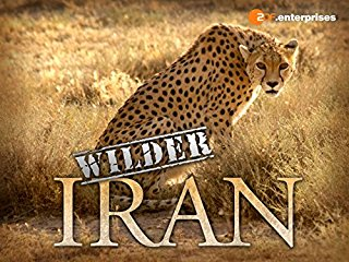 Wilder Iran stream