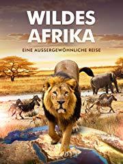 Wildes Afrika - Eine außergewöhnliche Reise stream