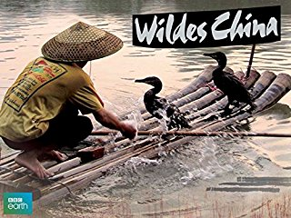 Wildes China stream