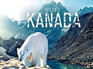 Wildes Kanada Stream