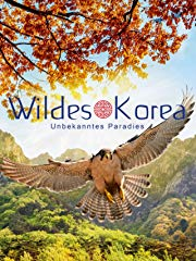 Wildes Korea - stream
