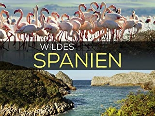 Wildes Spanien Stream