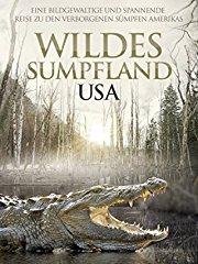Wildes Sumpfland USA stream
