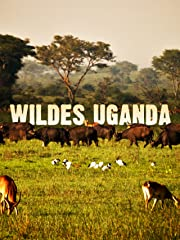 Wildes Uganda stream
