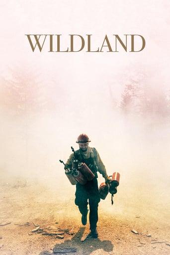 Wildland Stream