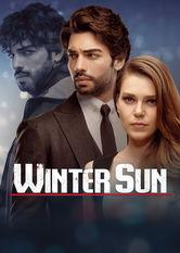 Winter Sun Stream