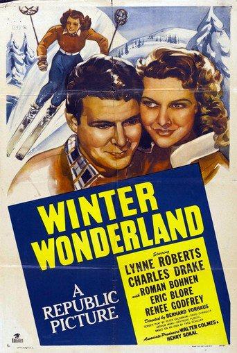 Winter Wunderland stream