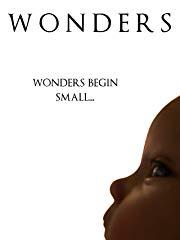 Wonders stream