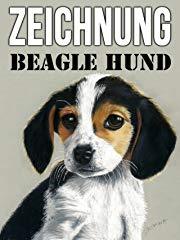 Zeichnung Beagle Hund stream