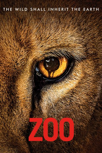 Zoo stream