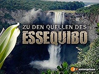 Zu den Quellen des Essequibo stream