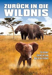 Zurück in die Wildnis - Ein kleiner Elefant auf dem Weg in die Freiheit stream