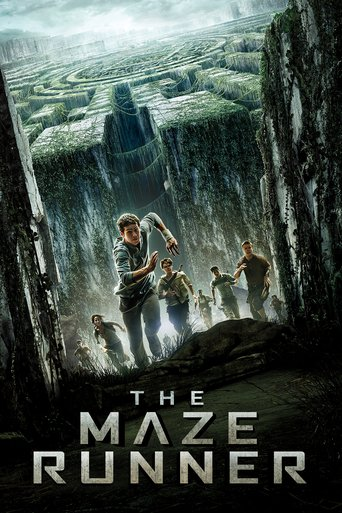 Movie The Maze Runner Stream