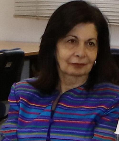 Prof. Noha Irani Hakime