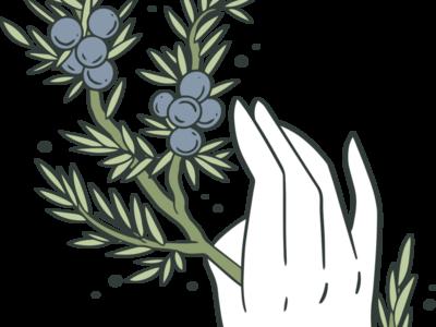 juniper james bridal photo 2