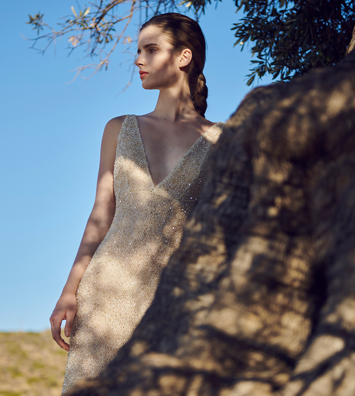 amaryllis dress photo