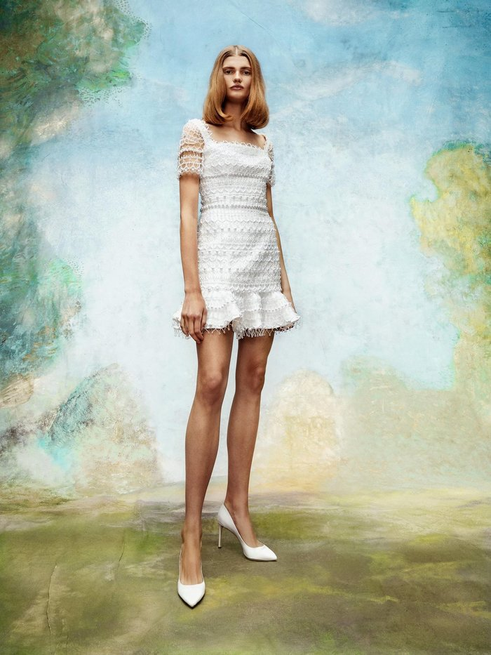 frosted lace mini dress  dress photo