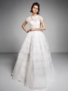 organza ruffle gown  dress photo 1