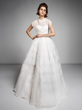 organza ruffle gown  dress photo