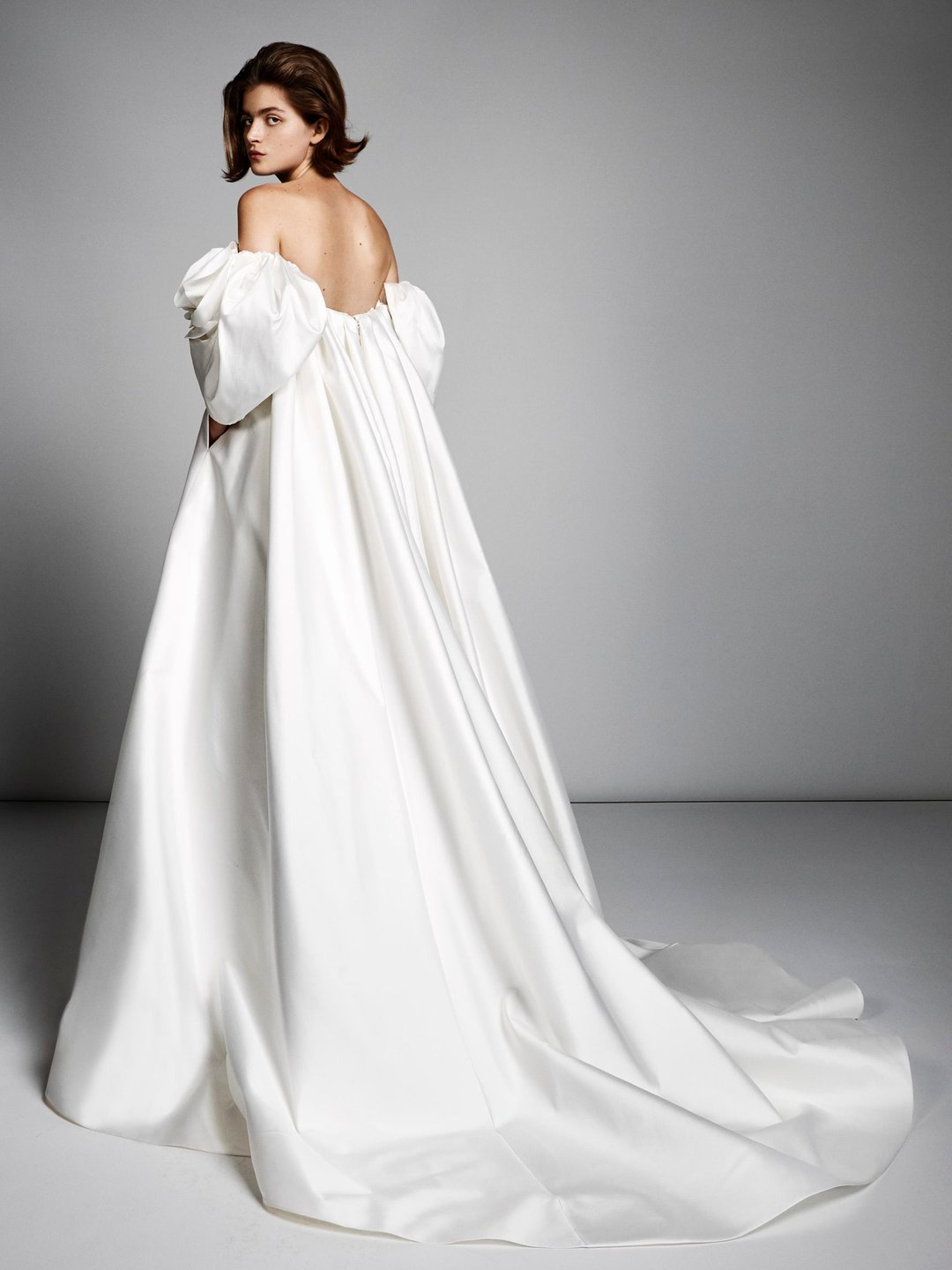 rose sleeve empire gown  dress photo