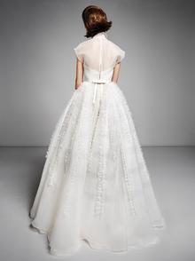 organza ruffle gown  dress photo 2