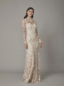 rosari gown - nude dress photo 1