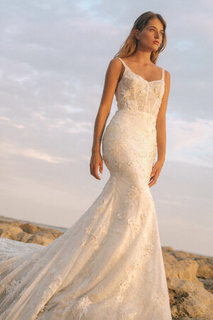zinnia dress photo 1