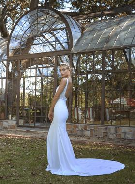 sirius dress photo